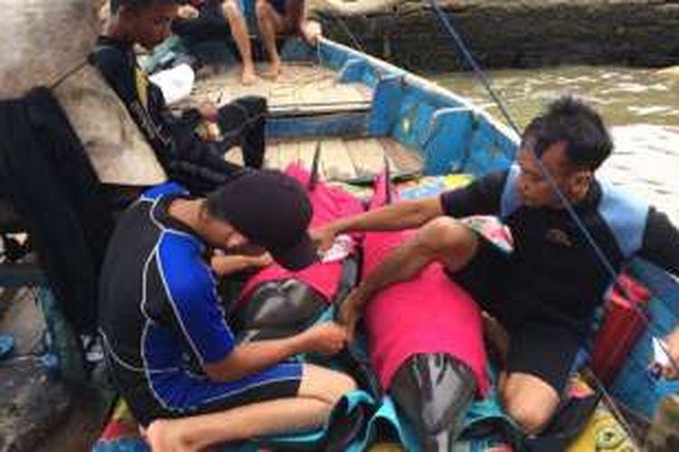 Dua ekor lumba lumba yang tertangkap jaring nelayan saat akan dilepaskan di area Pantai Sigandu, Batang, Jawa Tengah.