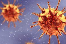 Lembaga Eijkman: Vaksin Covid-19 Masih Efektif Lawan Mutasi Virus Corona B.1.1.7