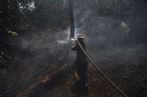 BPPT Klaim Modifikasi Cuaca Tekan Kebakaran Hutan