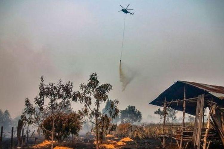 Sejumlah perusahaan kelapa sawit dan bubur kertas yang terlibat kebakaran hutan dan lahan (karhutla) dalam periode 2015-2018 lolos dari sanksi serius pemerintah, kendati telah terjadi kebakaran berulang di area lahan yang sama.
