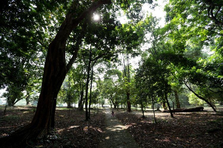 Wisatawan mengunjungi Kebun Raya Bogor, Jawa Barat, Jumat (19/5/2017). Kebun botani yang digagas oleh Prof C.G.C Reinwardt seorang botanis berkebangsaan Jerman sebagai tempat penelitian ini genap berusia 200 tahun.