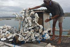 Cerita Nelayan Benur di Lombok yang Hidupnya Tak Tentu karena Tengkulak