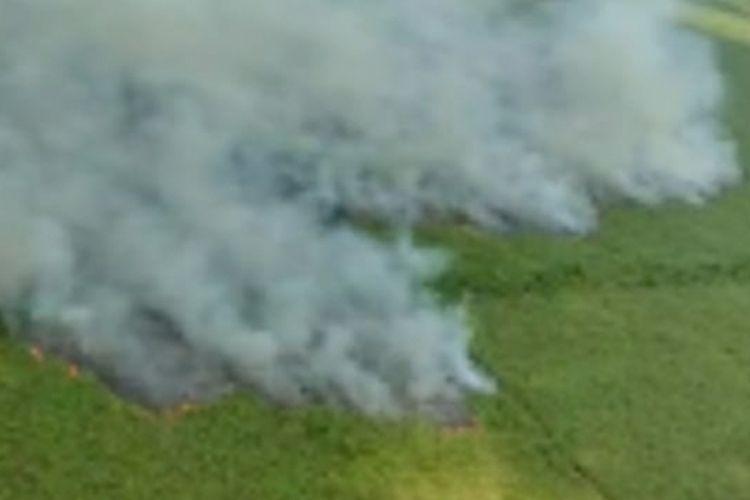 Kebakaran hutan dan lahan di wilayah Kota Dumai, Riau, Selasa (23/2/2021).