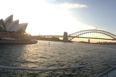 Panjat Puncak Sydney Harbour Bridge, Seorang Lelaki Ditangkap