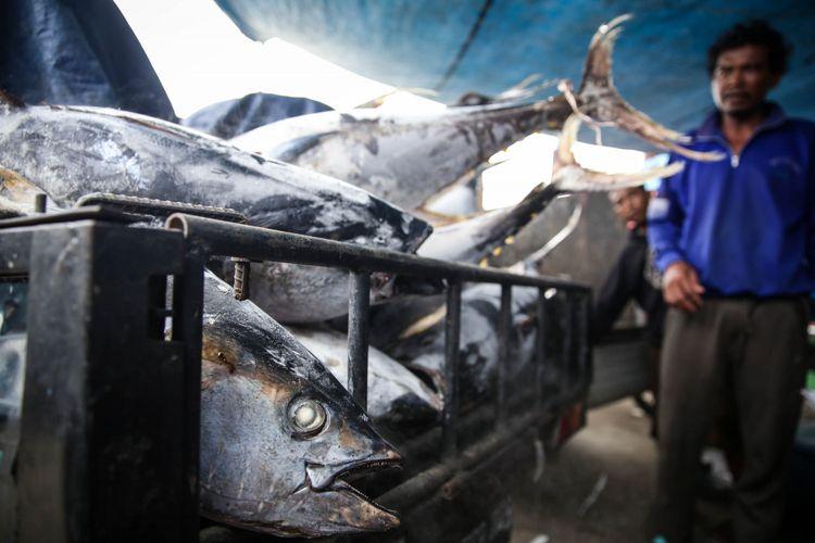 Nelayan melakukan bongkar muat ikan tuna hasil tangkapan di Pelabuhan Muara Baru, Penjaringan, Jakarta Utara, Selasa (4/12/2018). Volume ekspor tuna Indonesia seperti dikutip dari data Kementerian Kelautan dan Perikanan, mencapai 198.131 ton dengan nilai 659,99 juta dollar AS pada tahun 2017.