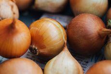 Komisi IV: Pembebasan Impor Bawang Putih dan Bombai Ancam Swasembada Hortikultura
