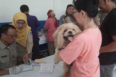 Sosialisasi dan Vaksinasi Rabies di Jakut Tanpa Penangkapan Kucing dan Anjing Liar