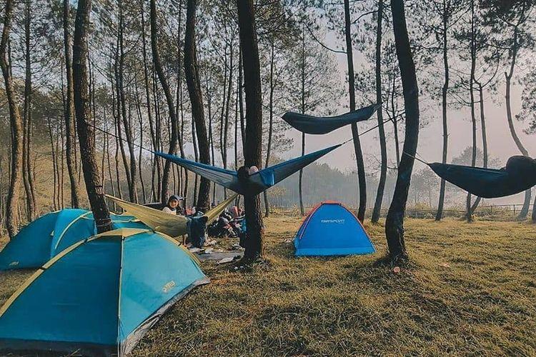 Pekemah sedang camping di area Hutan Pinus Rahong dengan tenda dome dan hammock
