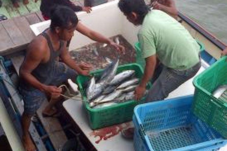 Suasana Pasar Ikan di Pasar Jamaker Nunukan. Akibat Cuaca Buruk, Kapal motor pengangkut ikan ke Tawau Malaysia tenggelam di Tanjung Aus Sebatik.