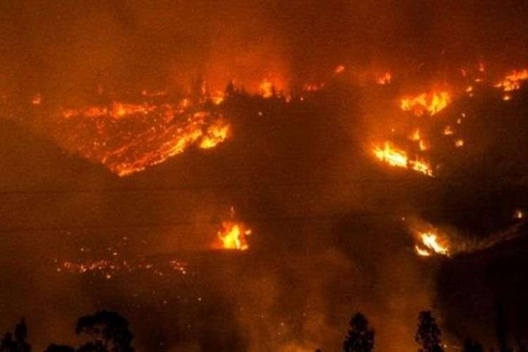 Empat petugas pemadam kebakaran dan dua polisi tewas saat mereka tengah berjuang memadamkan kebakaran hebat di kawasan hutan di Cile tengah, Rabu (25/1/2017).