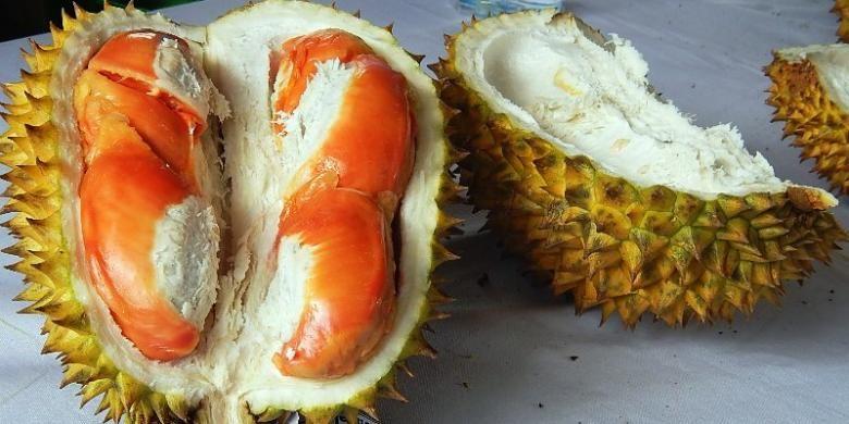 Durian merah, buah khas Kabupaten Banyuwangi, Jawa Timur.