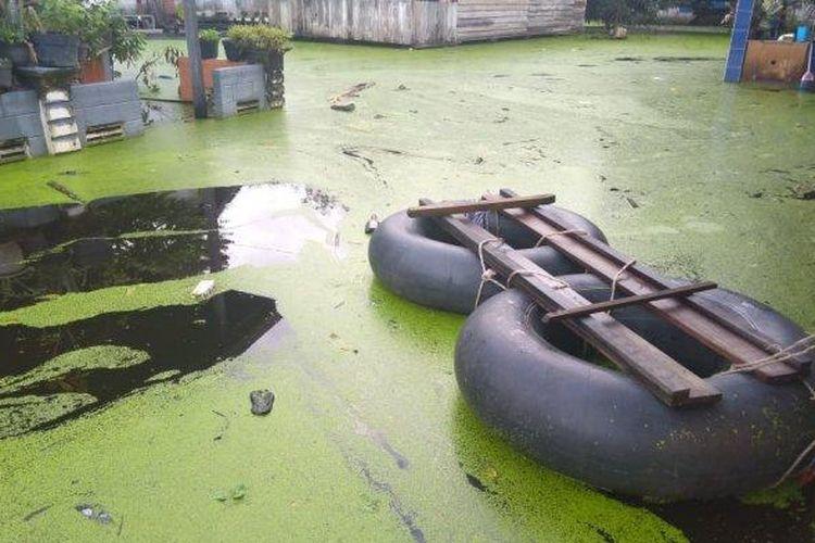 Genangan air yang merendam pemukiman rumah warga di Kelurahan Alai berubah berwarna hijau akibat serbuan eceng gondok.