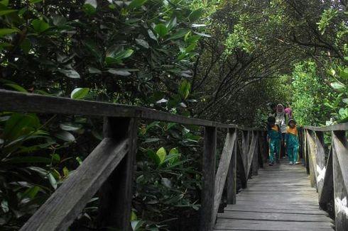 Serbuan Sampah di Konservasi Mangrove Balikpapan