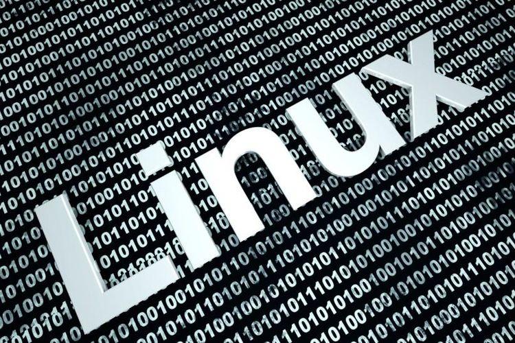 Ilustrasi Linux.