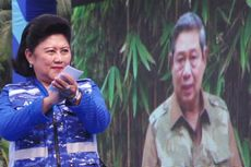 Syarief Hasan: Partai Demokrat, Partainya SBY