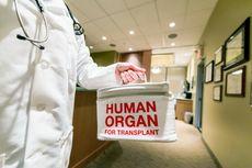 Dapat Organ dari Pendonor yang Sama, Tiga Orang