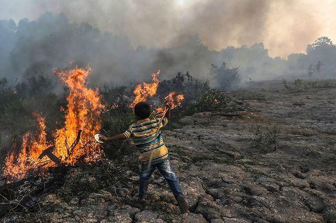 Menurut Menteri LHK, Ini Sebab Kebakaran Hutan Tahun Ini Lebih Parah