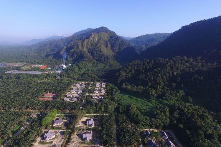 Penampakan area konservasi PT Austindo Nusantara Jaya Agri Siais (ANJAS).