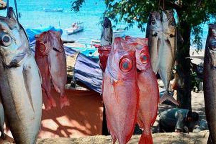 Ikan-ikan segar yang dijual di pantai sekitar Kota Larantuka, Flores Timur, Nusa Tenggara Timur.