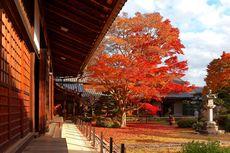 4 Kuil Terseram di Jepang, Berani Uji Nyali di Sana?