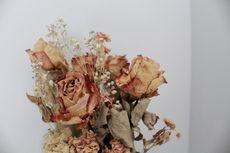 6 Bunga yang Bisa Dikeringkan untuk Dekorasi Ruangan