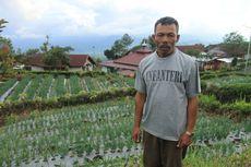 Suryanto Tinggal 22 Tahun di Gunung Dempo, Tak Pernah Diganggu Harimau