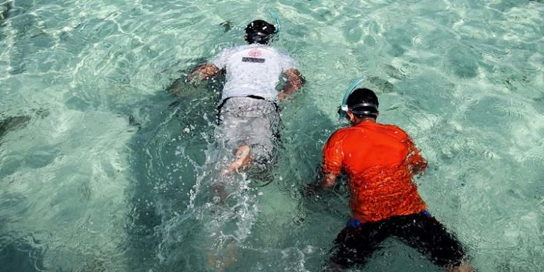 Wisatawan snorkeling di Gusung Pulau Perak, Kelurahan Pulau Harapan, Kecamatan Kepulauan Seribu Utara, Kabupaten Kepulauan Seribu, Sabtu (24/1/2015). Snorkeling, susur pulau, dan jalan-jalan menikmati keindahan matahari terbenam merupakan aktivitas yang mengasyikkan di Pulau Harapan.