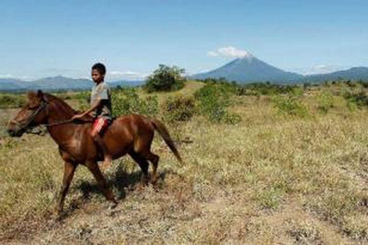 Yohanes Guna (13) menunggangi kuda di lokasi Lembah Soa atau Soa Basin, Soa, Kabupaten Ngada, Flores, Nusa Tenggara Timur, Jumat (1/6/2012). Dia menggunakan kuda untuk menggembalakan sapi dikawasan yang berupa padang savana ini.
