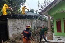 Hujan dan Angin Kencang di Depok Senin Sore, 2 Pohon di Permukiman Warga Tumbang