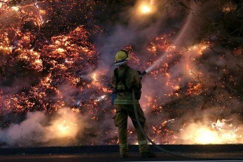 Kebakaran di Taman Nasional Yosemite Semakin Meluas