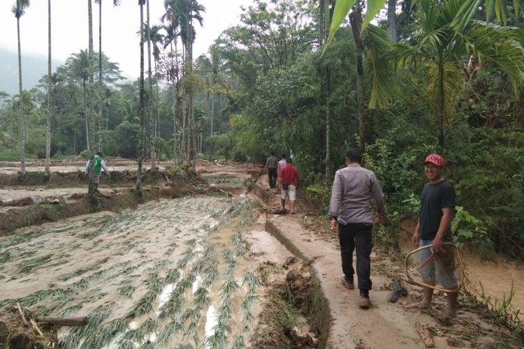Sawah warga Lebong tertimbun lumpur akibat banjir dan longsor menerjang kawasan itu pada 6 Februari 2019