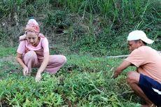 Bersama Istri asal Prancis, YouTuber Indra Budiman Raih Jutaan Rupiah dari Konten Begini di Lombok