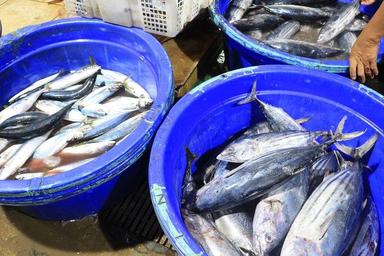 Hasil laut yang dijual di PIM Muara Baru berupa ikan. Harga jualnya beragam mulai dari Rp 20.000 per kilogram.