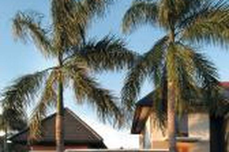 Rumah bergaya tropis di bilangan Alam Sutera, Tangerang.