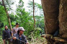Tebing 40 Meter Longsor, Tutup Akses Jalan di Selatan Cianjur