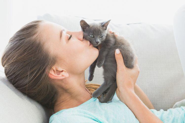 Ilustrasi mencium kucing.