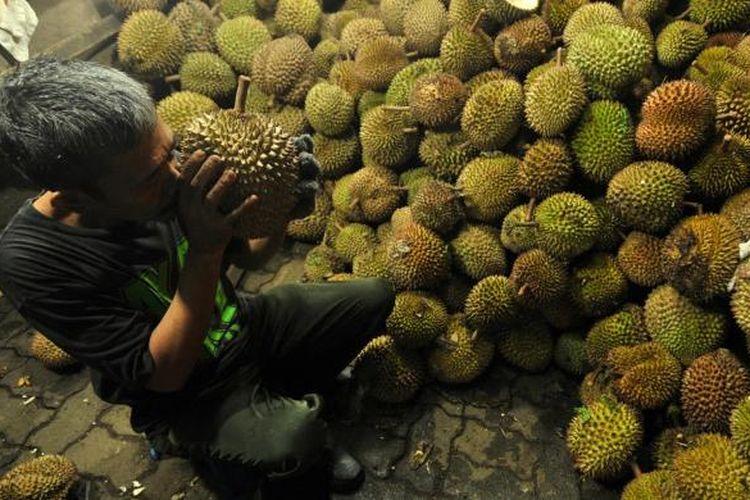 Seorang pekerja memilih durian untuk pelanggan di kedai Ucok Durian, Medan, Minggu (9/12/2012). Kedai Ucok Durian menjadi tujuan kuliner para pelancong saat ke Medan.