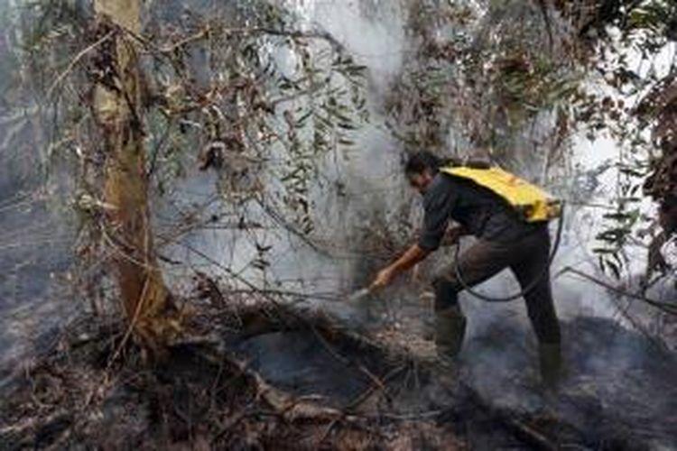 Relawan berusaha memadamkan api di kawasan Taman Nasional Tanjung Puting, Kotawaringin Barat, Kalimantan Tengah, Senin (26/10/2015). Sejak akhir bulan September 2015, para relawan yang berasal dari berbagai lembaga maupun organisasi berjibaku memadamkan api yang menghanguskan sedikitnya 90.000 hektar hutan di TNTP.