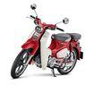 Inden Honda Super Cub C125 Model Baru Bisa Sampai Tahun depan