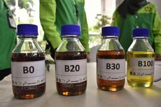 Inspirasi Energi: Benarkah Biodiesel Ramah Lingkungan?