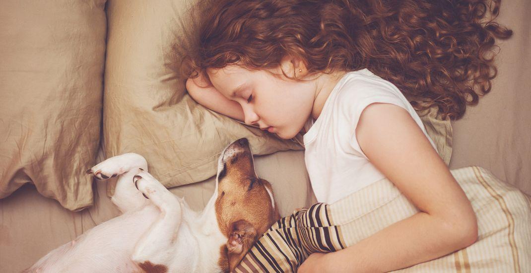 Ilustrasi anak tidur bersama anjing