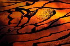 Keajaiban Alam dan Budaya Warisan Dunia UNESCO 2013