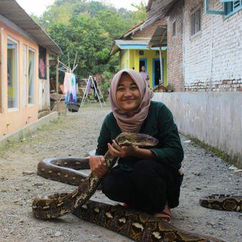 Faizah (17), seorang warga, berfoto bersama ular piton milik Munding Aji (30), seorang pemuda dari RT 2 RW 1 Desa Gunungsari, Kecamatan Pejagoan, Kebumen, Jawa Tengah, yang mengoleksi 10 ular piton besar. Dua di antaranya bernama Syahrini dan Rambo.