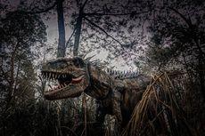 6 Tips Berkunjung ke Mojosemi Dinosaurus Park, Jangan Salah Kostum