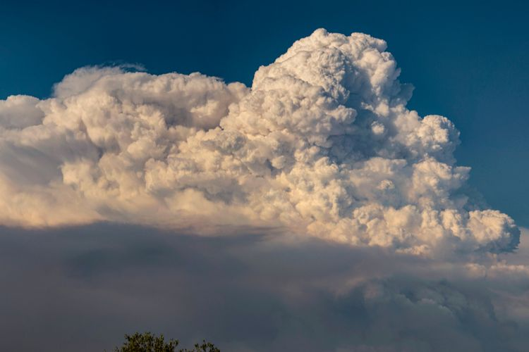 Awan Pyrocumulus Terlihat Di Atas Kebakaran Hutan Australia Ini Penjelasannya