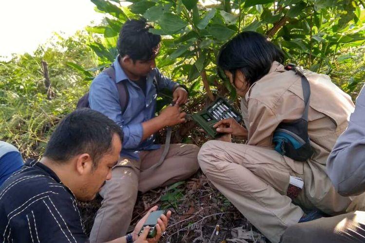 Petugas BBKSDA Riau memasang kamera trap atau kamera pengintai disekitar lokasi temuan jejak harimau sumatera di Desa Karya Indah, Kecamatan Tapung, Kabupaten Kampar, Riau, Jumat (13/12/2019).
