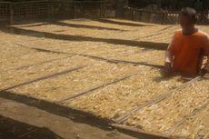 Cerita Pengusaha Kerupuk Rambak Diuntungkan Musim Kemarau Panjang: Produksi Cepat, Omzet Melesat