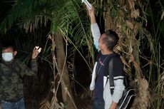 Kisah Pilu ABG di Kalbar yang Ditemukan Tewas Mengenaskan di Semak-semak...