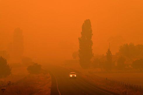 2020 Baru Dimulai dan Bumi Cetak Rekor Suhu Terpanas, Ini Sebabnya