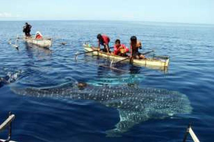 Anak-anak nelayan bercanda dengan hiu paus di pantai Botubarani, Kecamatan Kabila Bone, Kabupaten Bone Bolango, Gorontalo.